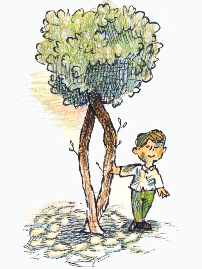 木の下008
