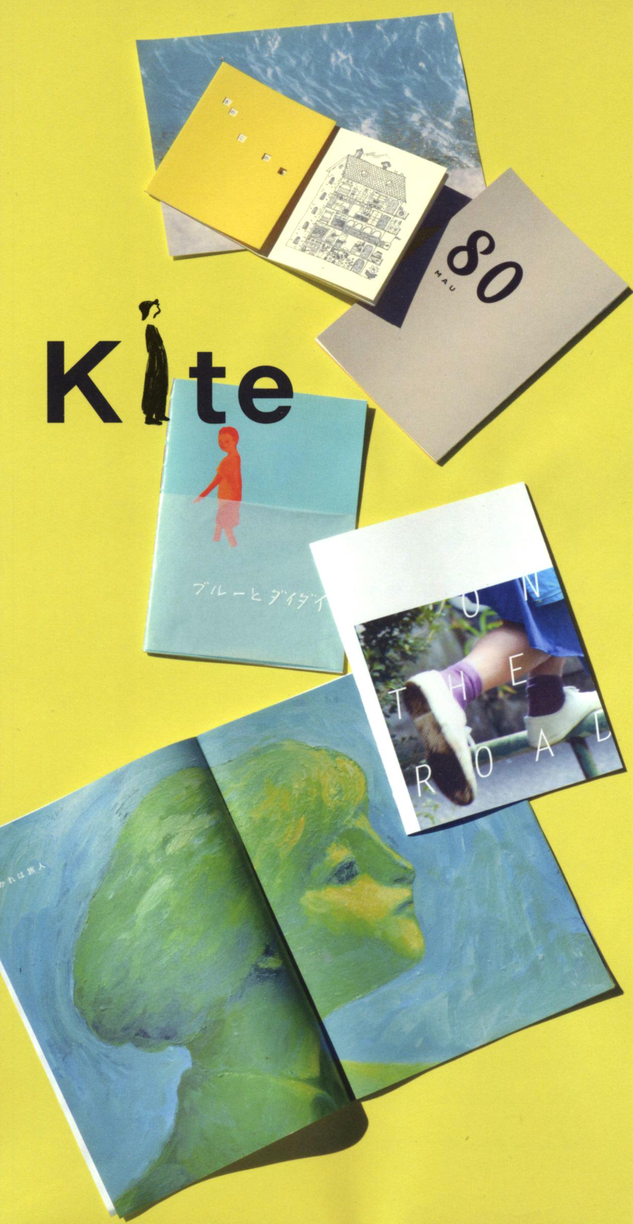 kiteDM2013027
