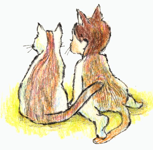 猫と眺める125