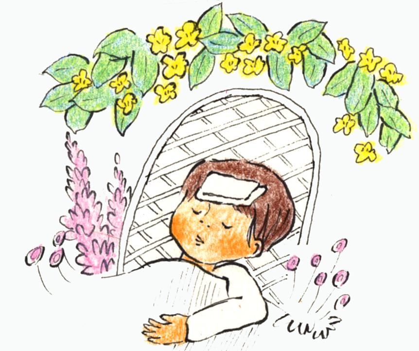 植物治癒015